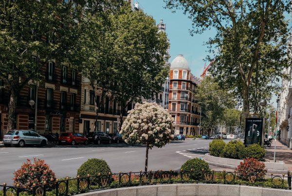 Evolución del precio de la vivienda en alquiler en Madrid